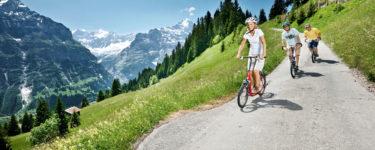 Trottibike von Bort nach Grindelwald