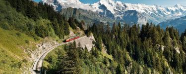 Zug von Schynige Platte nach Wilderswil